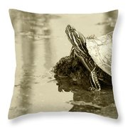 Painted Turtle On Mud In A Marsh Throw Pillow