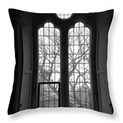 Palace Window Throw Pillow