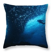 Palau, Diving Throw Pillow by Dave Fleetham - Printscapes