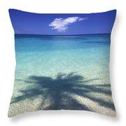 Palm Shadows Throw Pillow