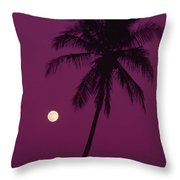 Palm Tree And Moon Throw Pillow