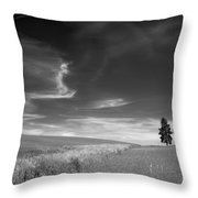 Palouse Farms Throw Pillow