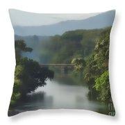 Panama014soft Throw Pillow