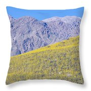 Panoramic View Of Desert Gold Yellow Throw Pillow
