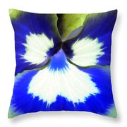 Pansy Power 85 Throw Pillow