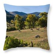 Pastural Setting Throw Pillow