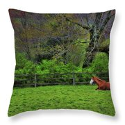 Pasture Napping Throw Pillow