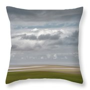 Patch Of Blue Throw Pillow