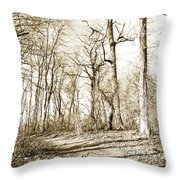 Path In A Forest Throw Pillow