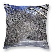 Path In Winter Forest Throw Pillow