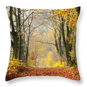 Path Of Red Leaves Towards Light In Fall Forest Throw Pillow
