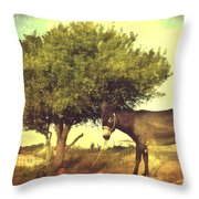 Pause For Thought Throw Pillow