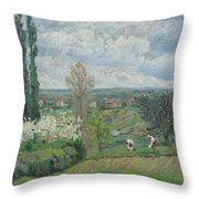 Peacock And Poultry In A Park, Chased By A Dog, Arie Lamme, C. 1775 - C. 1800 Throw Pillow