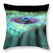 Peacock Falls Throw Pillow