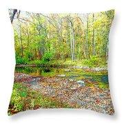 Pennsylvania Stream In Autumn, Digital Art Throw Pillow