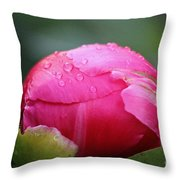 Buttoned Up Throw Pillow