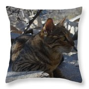 Phoelix Throw Pillow