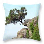 Pine Tree On A Rock Throw Pillow