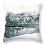 Pine Twigs And Ice Throw Pillow