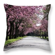 Pink Blooming Trees Throw Pillow