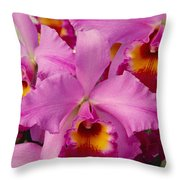 Pink Cattleya Orchids Throw Pillow by Allan Seiden - Printscapes