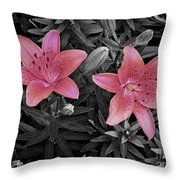 Pink Daylilies With Partially Desaturated Petals And Black And White Background Throw Pillow