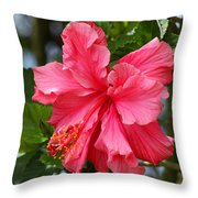 Pink Hibiscus Flower On A Tree Throw Pillow