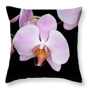 Pink Orchid Vii Throw Pillow