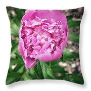 Pink Peony Print Throw Pillow