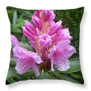 Pink Rhododendron 0070 Throw Pillow