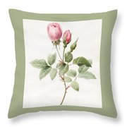 Pink Rose And Buds Throw Pillow