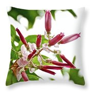 Pink Tropical Flower In Huntington Botanical Garden In San Marino-california Throw Pillow