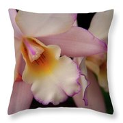 Pinky Pink Throw Pillow