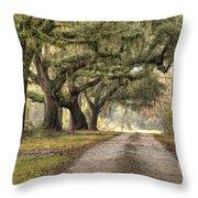 Plantation Drive Live Oaks  Throw Pillow