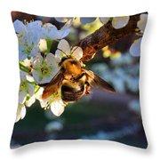 Plum Full Of Bees Throw Pillow