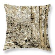 Pocono Mountain Stream, Pennsylvania, Digital Art Throw Pillow