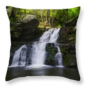 Pocono Mountains - Flowing Cascades Throw Pillow