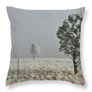 Pogonip Frosty Morning Throw Pillow