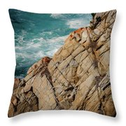 Point Lobos California Throw Pillow