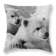 Polar Bear Cubs Throw Pillow