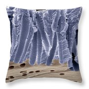 Polycarbonate Filter Throw Pillow