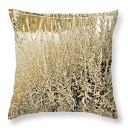 Pond In The Bershire Mountains, Western Massachusett Throw Pillow
