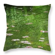 Pond Throw Pillow