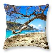 Porte D Enfer, Guadeloupe Throw Pillow