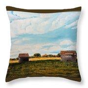 Prairie Homestead Throw Pillow