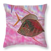 Pretty Fishy, Fish, 6, Multi-color, Pink Backgroun7 Throw Pillow