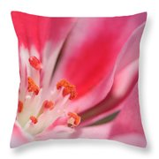 Small Details Matter Throw Pillow