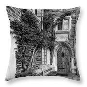 Princeton University Foulke Hall II Throw Pillow
