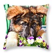 Puppy Oskar Throw Pillow