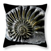Pyritized Ammonite Throw Pillow
